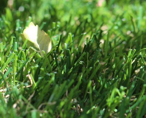 spring-artificial-turf-3